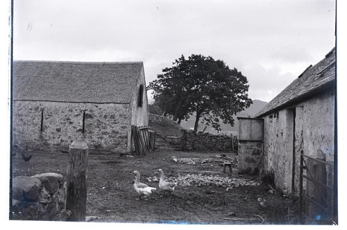Ardtur Farm [Port Appin].