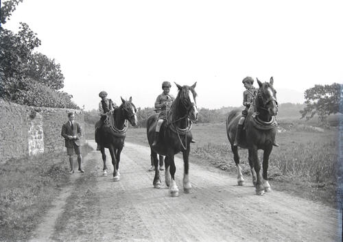 The Mounted Infantry: Off to the Front.
