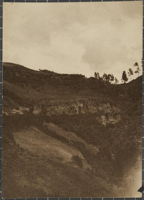 [Farming field on the slope of a hill]
