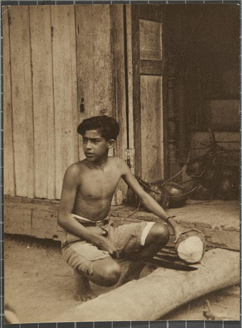[A boy cuts open a fresh coconut]