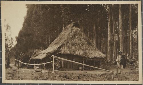[A man with a stick stands next to a wooden hut]