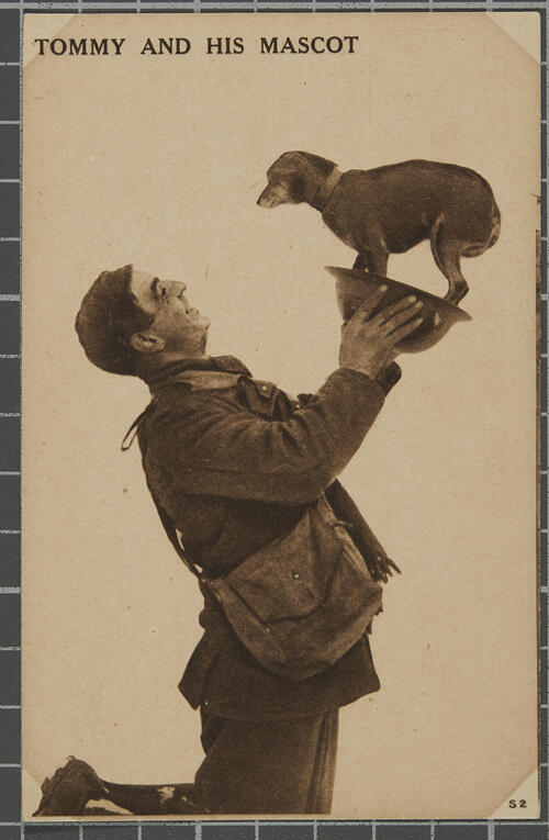 'Tommy & his [dog] Mascot'.