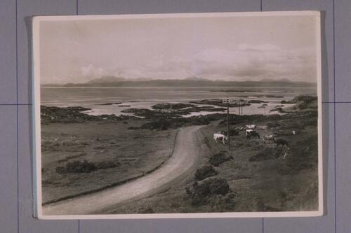 Road between Morar & Arisaig.
