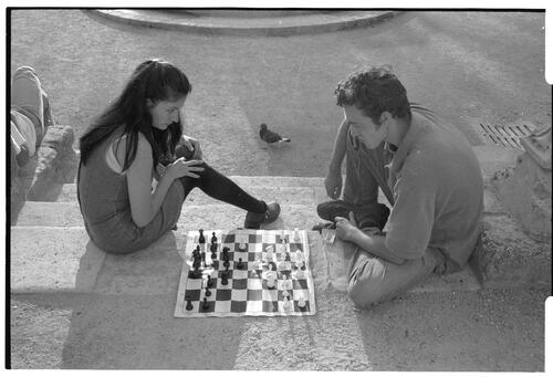 Chess and Pigeon