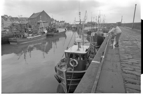 [Boats in Harbour, Pittenweem]