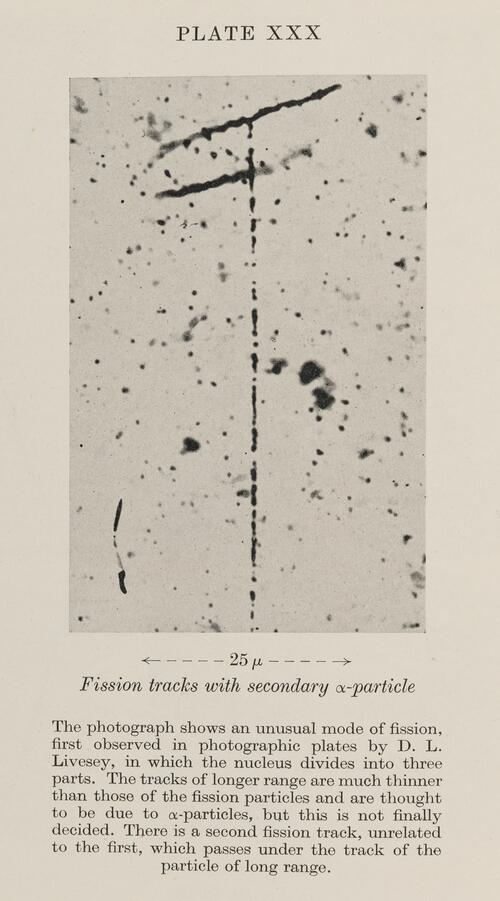 Fission tracks with seondary alpha-particle