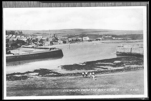 Eyemouth from the Golf Course.