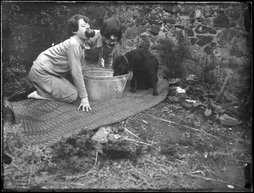 Two young girls and a pet dog ducking for apples in garden