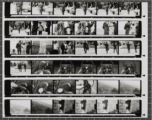 [Lot's Wife contact sheet 13]