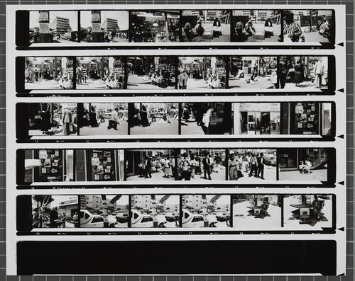 [Lot's Wife contact sheet 14]