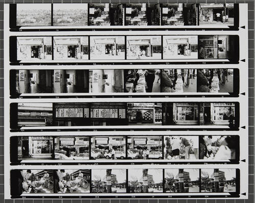 [Lot's Wife contact sheet 16]