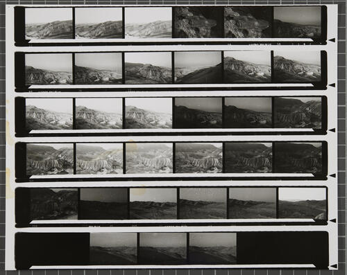[Lot's Wife contact sheet 37]