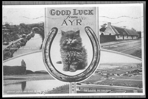 Good Luck from Ayr.
