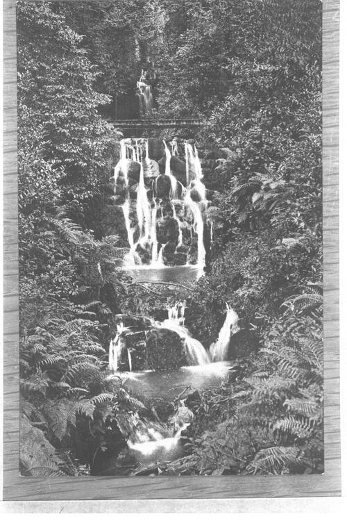 The Glen Waterfall, Newry.