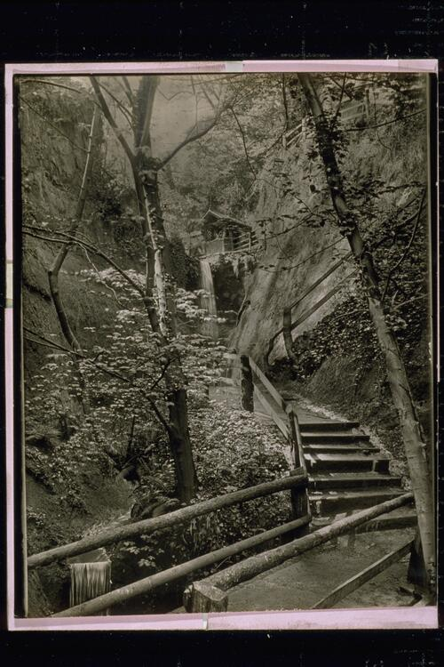 Shanklin Chine showing both Falls.