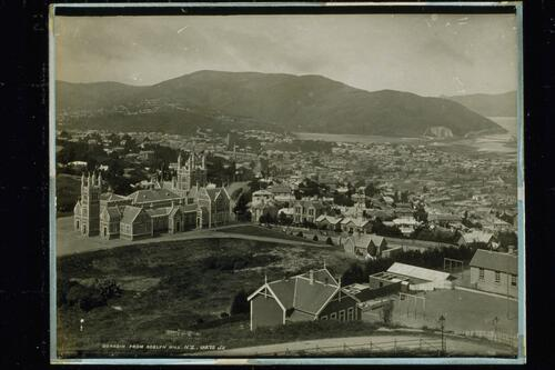Dunedin from Roslyn Hill.