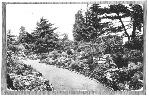 The Rockery, Kew Gardens.