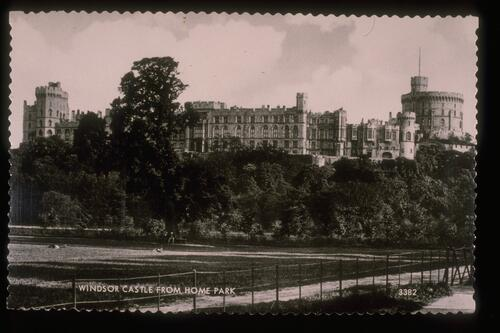 Windsor Castle from Home Park.