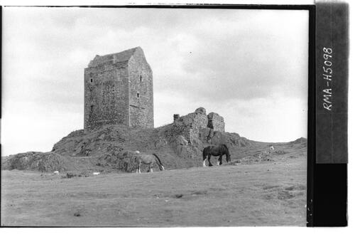 Smailholm Tower with horses.