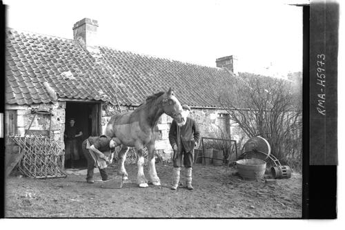 Smithy with horse being shod.