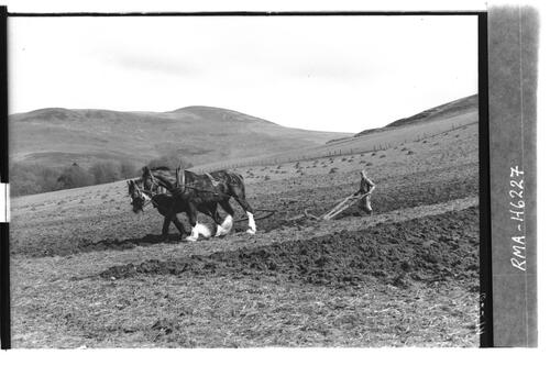 Ploughing at Dunsyre.