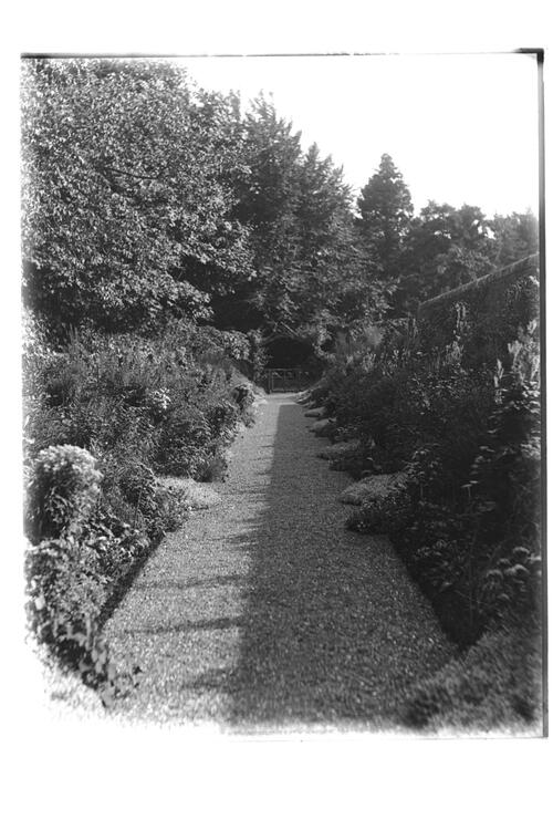 East Walk looking South, Montrave Gardens.