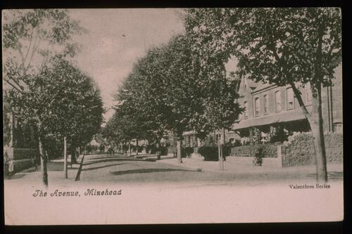 The Avenue, Minehead.