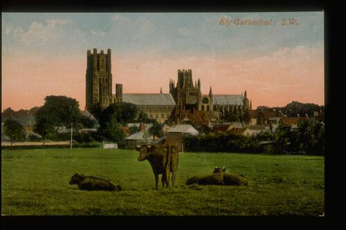 Ely Cathedral: S.W.