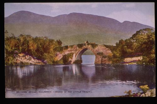 """Brickeen"" Bridge, Killarney."