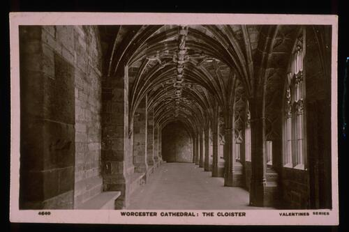 Worcester Cathedral: Cloister.