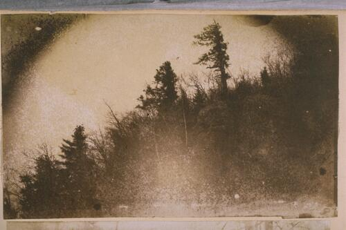 First American Calotype.