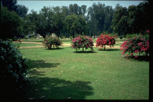 Somnathpur grounds.