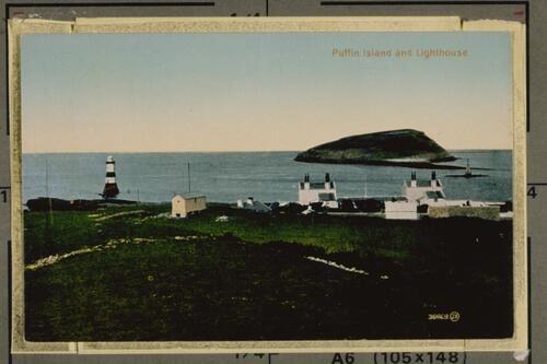 Puffin Island and Lighthouse.