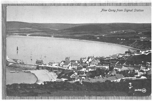 New Quay from Signal Station.