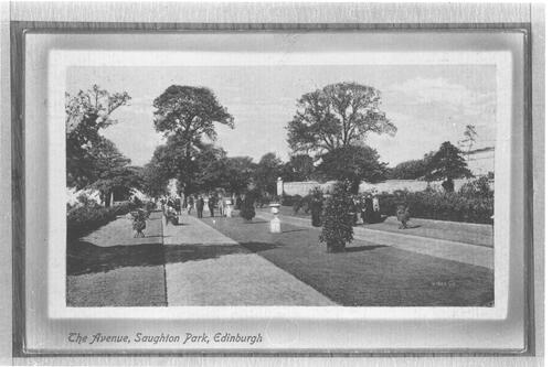 The Avenue, Saughton Park, Edinburgh.