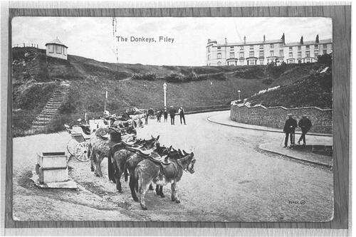 The Donkeys, Filey.