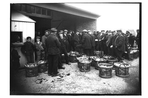 Selling the Fish, at the Fish Mart, Stornoway.