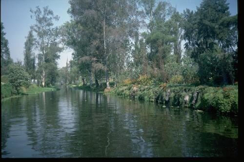 Xochimilco view, Mexico City.