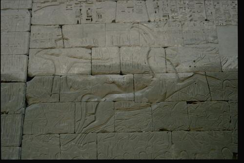 Relief, Ramesses III temple.