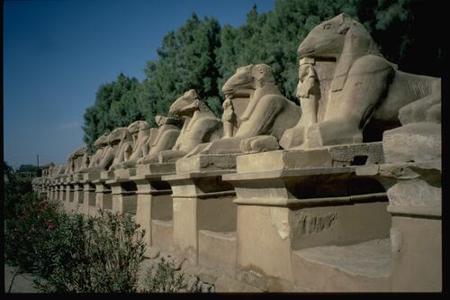 Avenue of Sphinxes, Karnak.